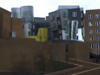 Gehryb2